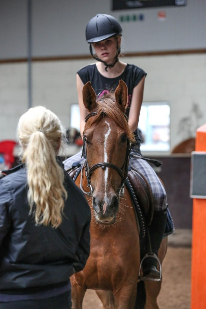 Professionele begeleiding van ruiters en amazones, paarden en pony's