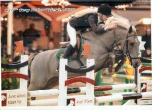 Josta springwedstrijd spring training pony paard