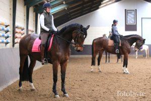 Pony en paardrijles manege De Hazelhorst, Den Ham Overijssel