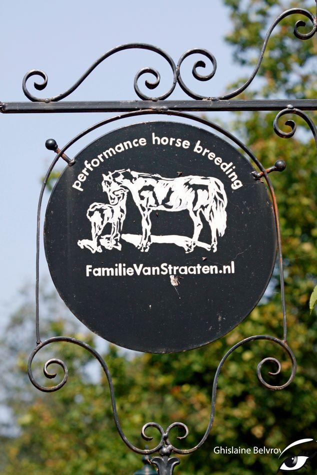 Paard & Bed De Hazelhorst van de familie Van Straaten